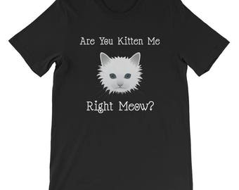 Are You Kitten Me Right Meow Cat T-Shirt