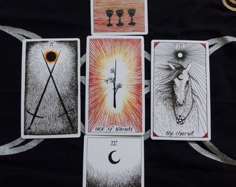 Tarot Reading  5 Card Reading using The Wild Unknown Tarot Cards  Any area of focus affordable Tarot