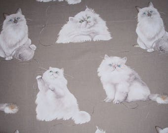 Games of cats - light Beige background