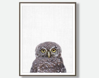 Owl Print, Owl  Decor, Digital Owl, Owl Art, Large Printable Poster, Owl Poster, Owl Download, Owl Wall Art, Modern Printable Art, Owl