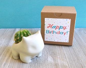 Concrete Bulbasaur Planter GIFT BOX set. Pokemon plant pot. To buy without a gift box please visit the link in the description.