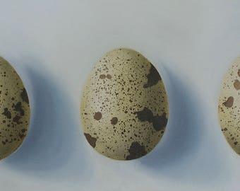Oil Painting, Three Quail eggs
