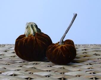 Set of 2 Golden-Brown Plush Velvet Pumpkins