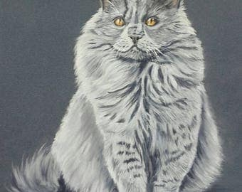 Persian Cat - animal painting