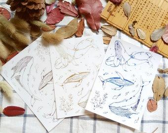Whale stickers, Whale Planner Stickers, Whale Stickers, Ocean, Passion Planner