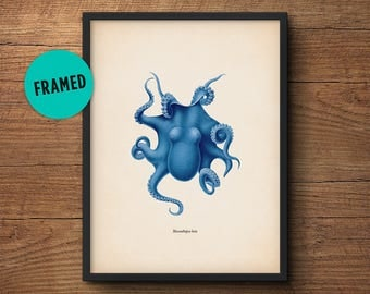 Blue Octopus Print, Framed Art, Octopus Art, Octopus Wall Art, Octopus Poster, Octopus Decor, Nautical Print, Wall Art, Bathroom Art