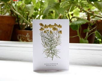 Sneezeweed: Greeting Card