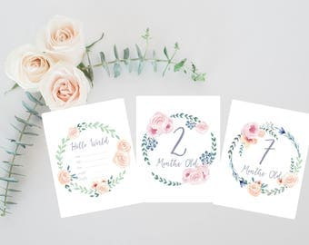 Boho Floral Baby Milestone Cards, Watercolor Boho Baby Gift, Baby Shower Gift, Newborn Keepsake, Girl Milestone Cards, Baby First Moments