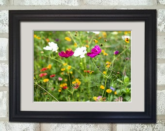 Dainty Wildflowers