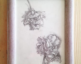 Drawing flowers White flowers Pencil drawing Original