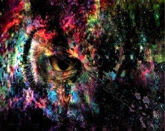 OwlSpace