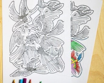 Bird2, colouring page, wings, download, colouring sheet, feathers,