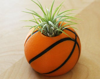 Basketball Air Plant Holder