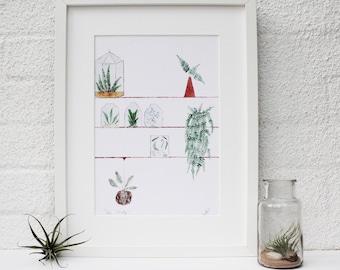 Terrarium Print, Terrarium Painting, Glass Terrarium, Fern Painting, Botanical Illustration, Home Decor, Plant Design, Plant Painting