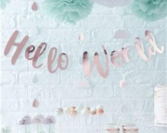 Hello World Baby Shower Bunting