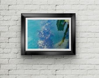 Alaskan Mussel 1 Abstract Fine Art Print, Canvas Gallery Wrap, Water Abstract Fine Art Print, Shellfish Wall Decor, Home Decor,Northwest Art