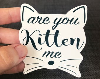 kitty/are you kitten me/vinyl sticker/car decal/window decal/tumbler decal/laptop sticker