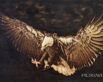 eagle.hawk.falcon portrait pyrography. woodburning art