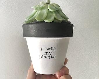 I WET MY PLANTS: terracotta pot   clay planter   pottery planter