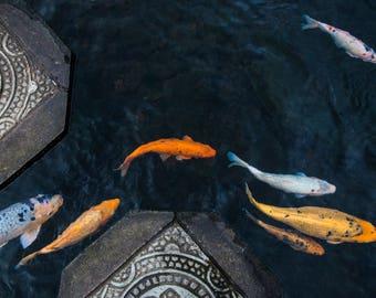 Koi Fish Bali Travel Photo, Large Wall Decor, Landscape Photography, Contemporary Art, Photos on Canvas