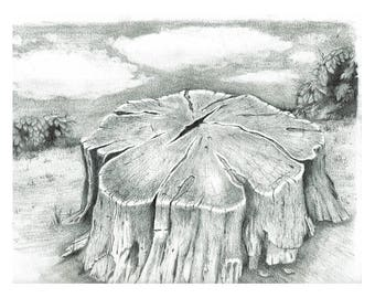 Tree Stump in pencil (print from original)