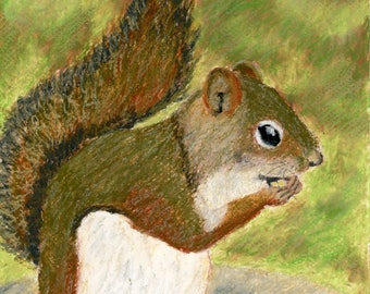Squirrel Art, Wildlife Painting, Oil Pastel Painting, Original Art Painting, Colorful Painting
