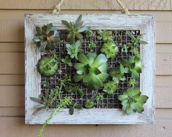 Vertical Wall Garden Frame