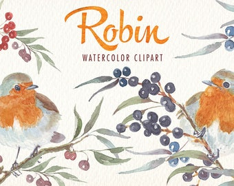 Watercolor Robin Bird png clipart images of watercolor Ideal printable posters poster cards stickers Congratulations and more