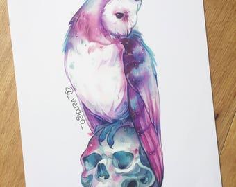 Owl a4 print