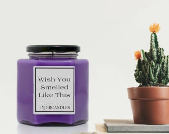 Wish You Smelled Like This Candle, Offensive Gift, Rude Gift, Cheeky Gift, Funny Gift, Sarcastic Gift, Candle, Scented Candle, Candles