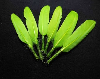 5 Green feathers with rings-9 to 13 cm-