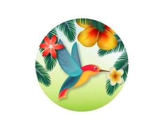 2 cabochons 12 mm glass Tropical Hummingbird - 12 mm
