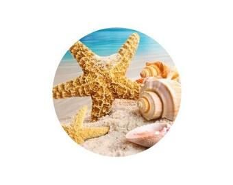 1 cabochon 25 mm glass starfish and shells - 25 mm