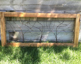 Barbed wire pallet window