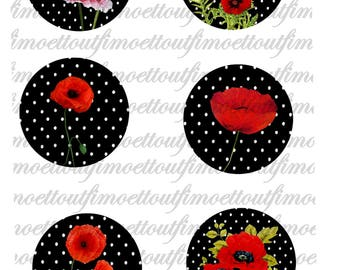 Digital 42Images sweet poppy, black background white polka dots (send email)