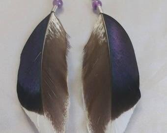 King and turf gemstone purple amethyst d blue feather earrings