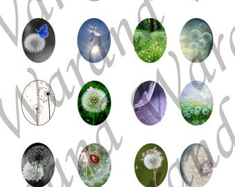 "Digital Board 20 digital images 30x40mm for ""Dandelion"" theme cabochons"