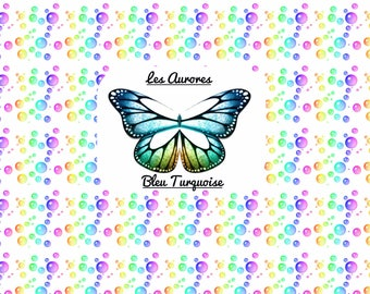 Transparent Butterfly Fairy wings pailleter
