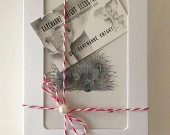 Twelve Animal Greetings Cards