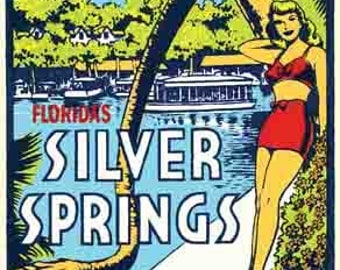 Vintage Style  Silver Springs FL Florida   Travel Decal sticker