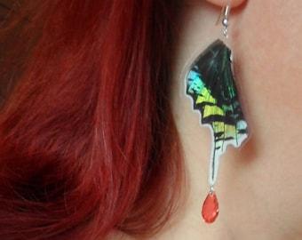Papaya Butterfly wing earrings