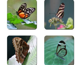 Set of 4 Butterflies drinks coasters featuring award winning photography by UniquePhotoArts.