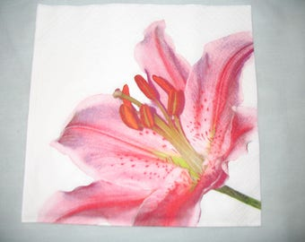 LILY ROSE DECORATIVE TOWEL