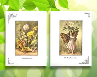 Windflower and Dandelion Flower Fairy Print from vintage book. Woodland Fairies Nursery themed gift for girl. Illustration for framing