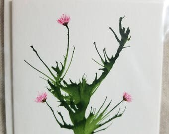 Pink Thistle - Small blank card