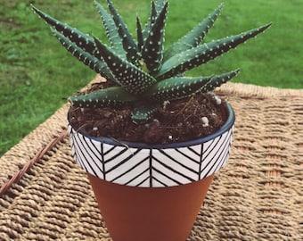 Simple White Tribal Plant Pots
