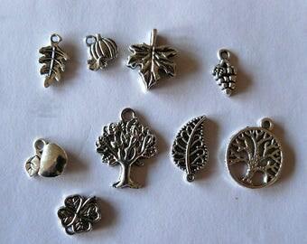 set of 9 charms