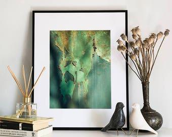 Abstract Peeling Paint, Photographic Print, 5x7, 8x10