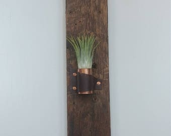 Copper leather Air Plant Holder