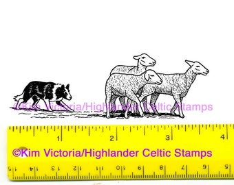 Border Collie & Sheep Unmounted Rubber Stamp